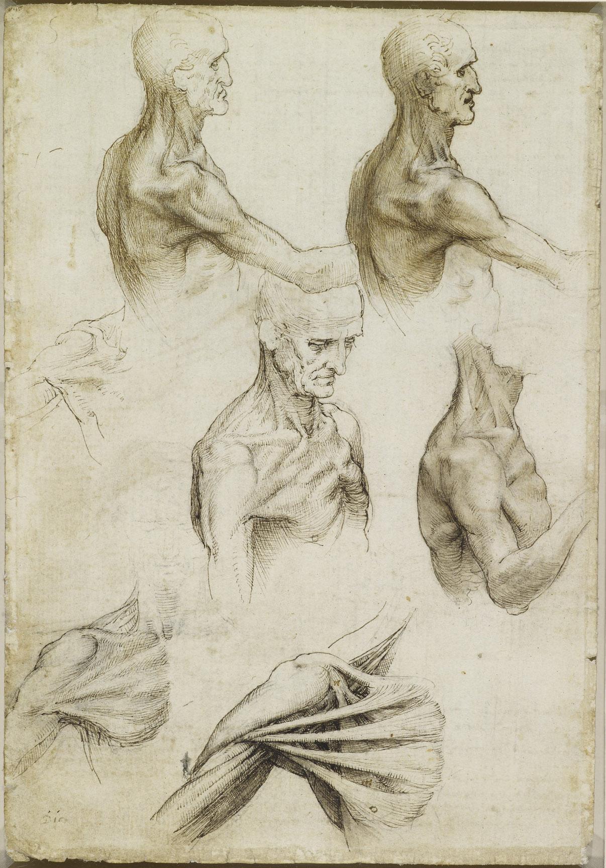 Теория и практика модуляции телесности.